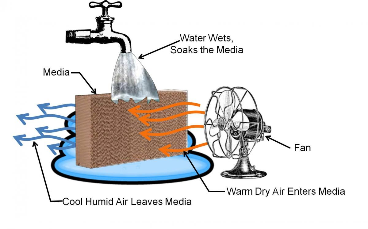 Concept behind an evaporative cooler – warm air is cooled as the air passes through a wet medium and gives up some of its heat to evaporate the water