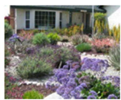 Mulch can provide many benefits to a landscape, including reducing the evaporation of water from the soil.