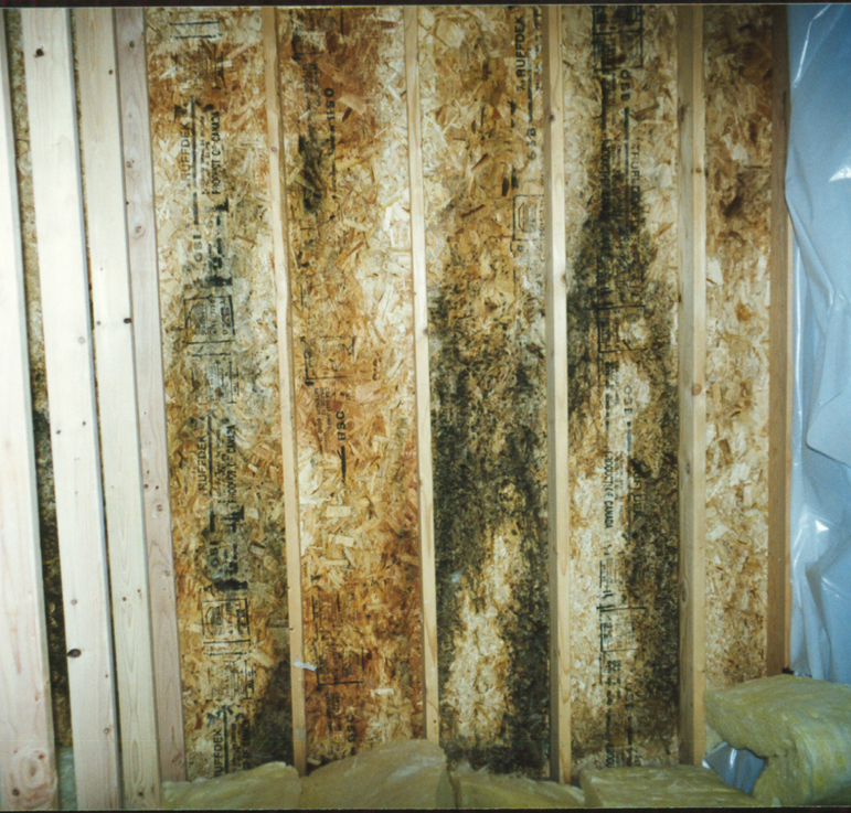 No visible signs of water damage or mold on materials for Green board exterior sheathing