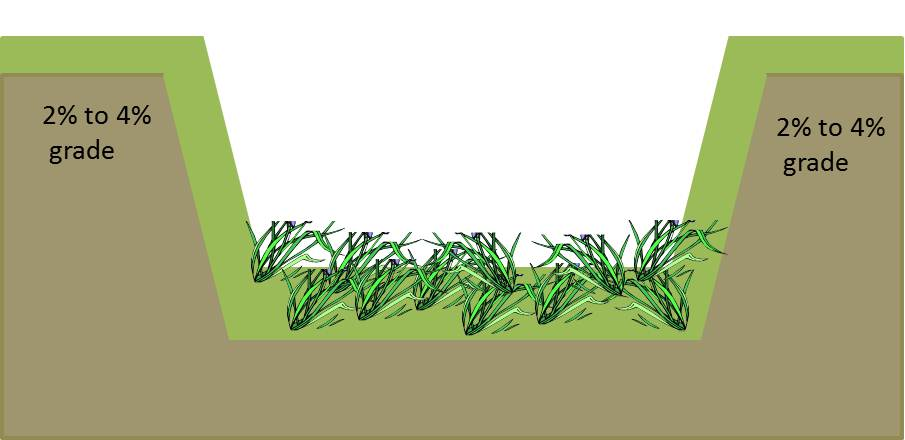 Vegetated swales help to control storm water runoff and can filter out pollutants.