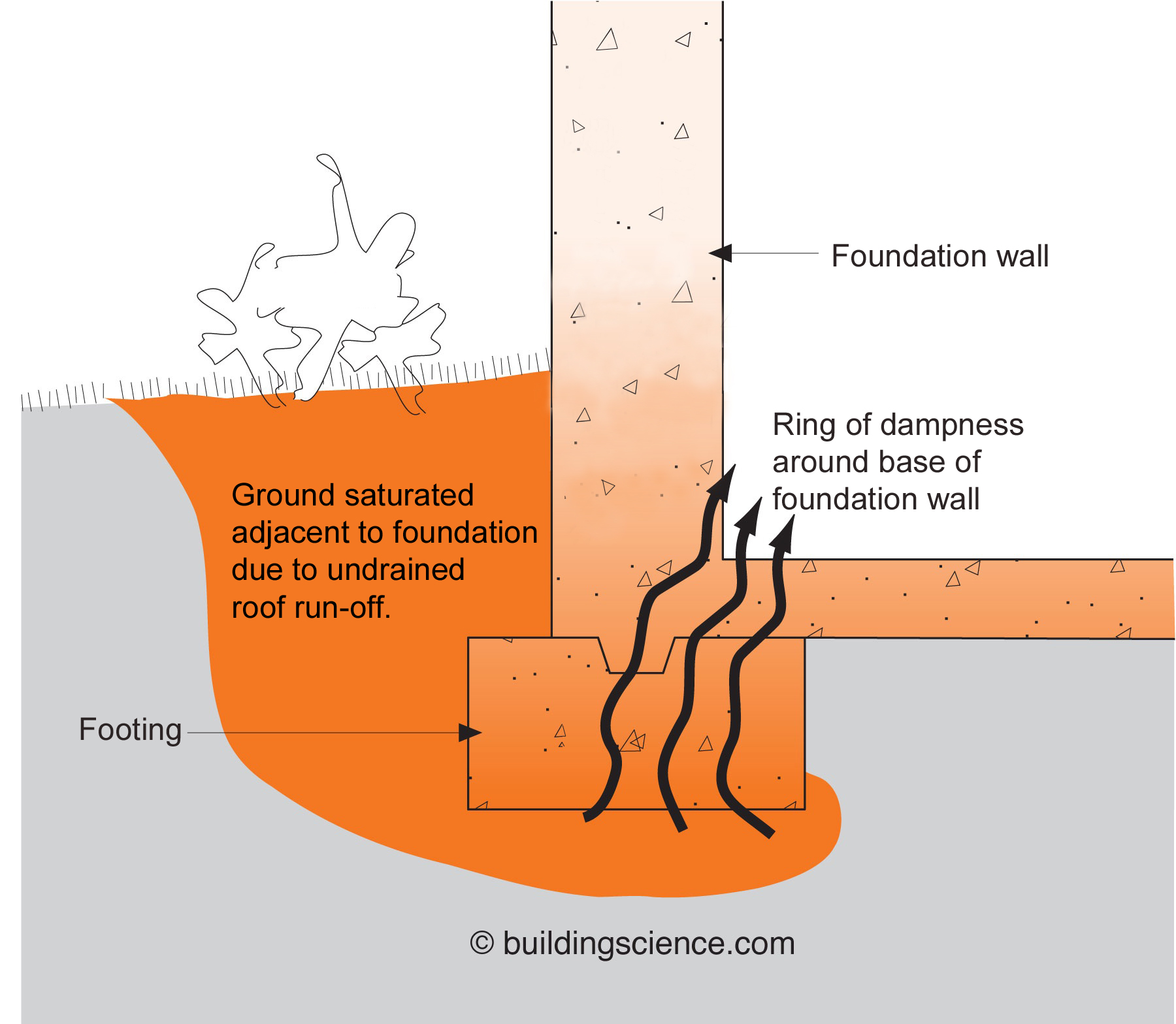 Saturated ground water. If not drained away from the house, the sheer volume of the water coming off a roof can quickly saturate the soil and wick through the foundation into the interior of a building