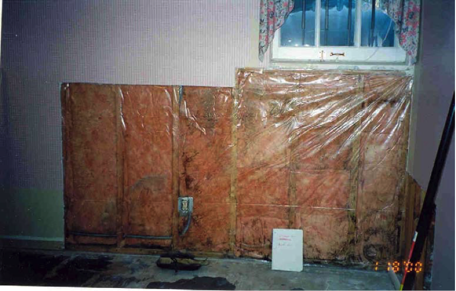 The polyethylene sheeting installed over batt insulation in this basement wall acted as a Class I vapor retarder, trapping water vapor from the concrete foundation wall, which condensed in the wall cavity providing a breeding ground for mold.