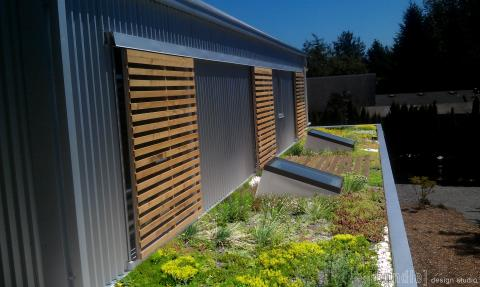 "A planted ""green"" roof absorbs storm water runoff."