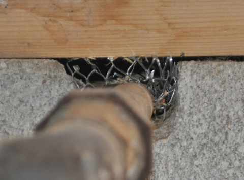 Wrong - The opening in the foundation wall around this pipe has not been sealed allowing entry for rodents and bugs
