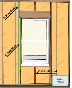 Framing limited at all windows and doors