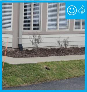 Right – The drain slopes away from the foundation and terminates at the proper distance