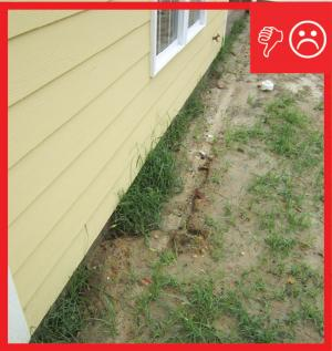 Wrong – There are no gutters installed and there is not a proper gravel bed located at the foundation