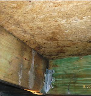 Building materials have signs of water damage and high moisture content