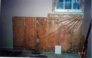 Don't install polyethylene sheeting over batt insulation in warm humid climates; the sheeting can trap moisture in the wall providing a breeding ground for mold.